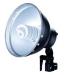 Linkstar FLS-21N1 Daglichtlamp 24W met Reflector
