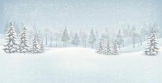 Fotostudio Achtergrondfoto op Vinyl - Kerst 05
