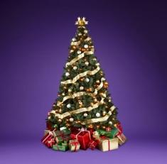 Fotostudio Achtergrondfoto op Vinyl - Kerst 14