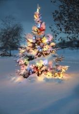Fotostudio Achtergrondfoto op Vinyl - Kerst 16