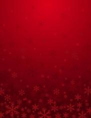 Fotostudio Achtergrondfoto op Vinyl - Kerst 17