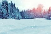 Fotostudio Achtergrondfoto op Vinyl - Kerst 10