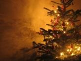 Fotostudio Achtergrondfoto op Vinyl - Kerst 23