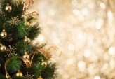 Fotostudio Achtergrondfoto op Vinyl - Kerst 28
