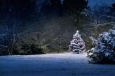 Fotostudio Achtergrondfoto op Vinyl - Kerst 29