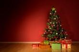 Fotostudio Achtergrondfoto op Vinyl - Kerst 32
