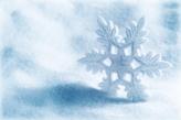 Fotostudio Achtergrondfoto op Vinyl - Kerst 35