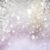 Fotostudio Achtergrondfoto op Vinyl - Kerst 53