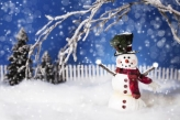 Fotostudio Achtergrondfoto op Vinyl - Kerst 56
