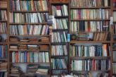 Fotostudio Achtergrondfoto op Vinyl - Boeken 7